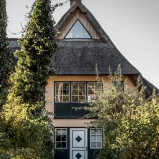 fischland-duenenmeer-3235 Kopie